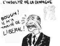 Liberalmini